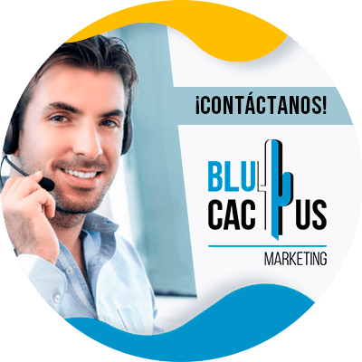 BluCactus - contactenos ya