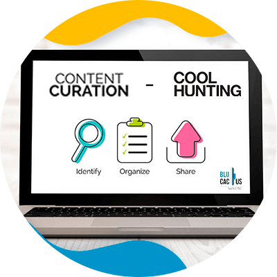 BluCactus - realizacion, con formato, acomodo , imagenes y seo del blog de blucactus es del dia, dominio web ya publicado- content