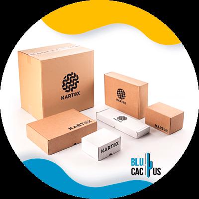 BluCactus - embalaje