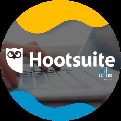 BluCactus - hootsuite
