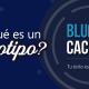 BluCactus / ¿Qué es un logotipo? / title