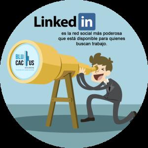 BluCactus /LinkedIn como red social / persona