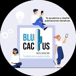 BluCactus /LinkedIn como red social / personas