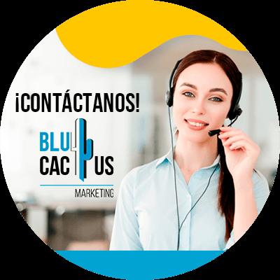 BluCactus - ¿Cuánto cuesta un Logo? - contacto