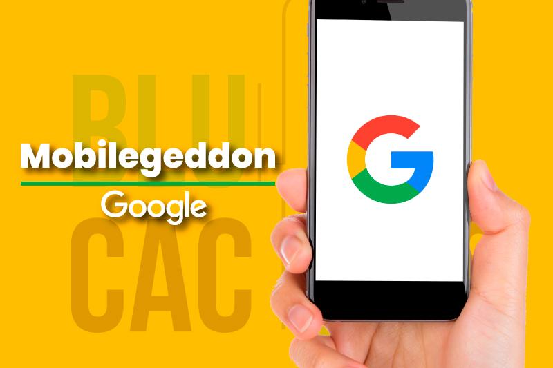 BluCactus Google Mobilegeddon