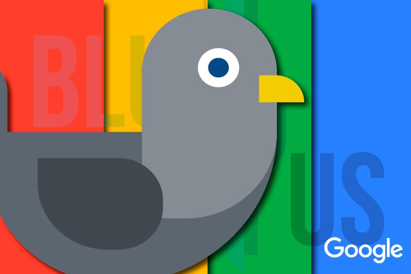 BluCactus Google Pigeon