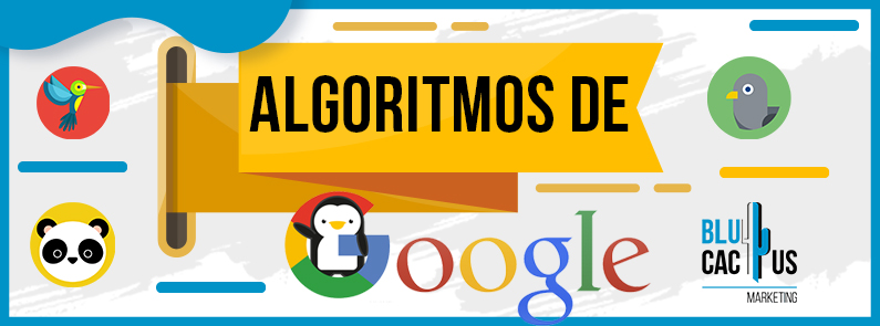 BluCactus - Algoritmos de Google - titulo