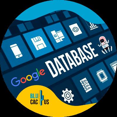 BluCactus - Algoritmos de Google - database