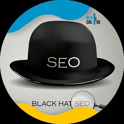 BluCactus - black hat seo
