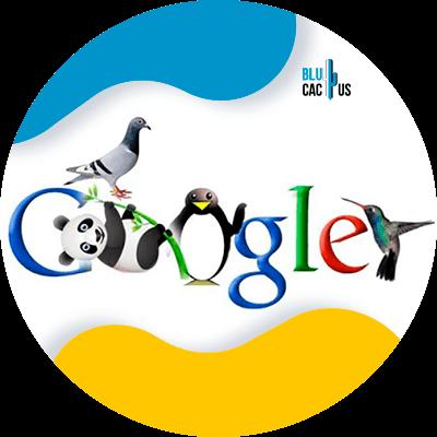 BluCactus - google search