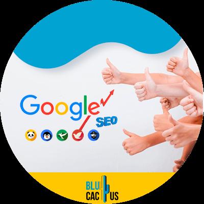 BluCactus - google seo