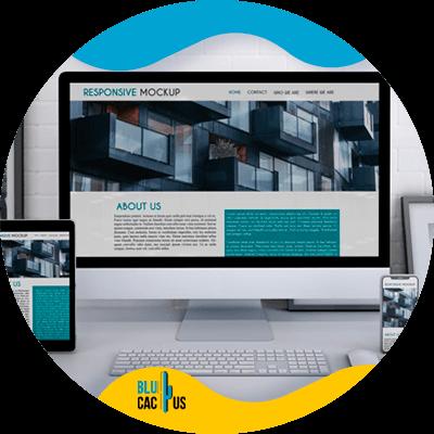BluCactus -diseño de sitios web exitosos - sobriedad