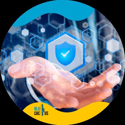 BluCactus -seguridad web