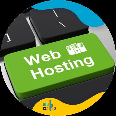 BluCactus -diseño de sitios web exitosos - web hosting