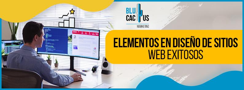 BluCactus -diseño de sitios web exitosos - titulo