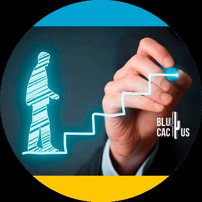 BluCactus - claves del exito