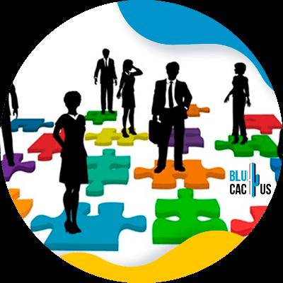 BluCactus -cultura de empresa