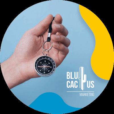 BluCactus -brujula de marca