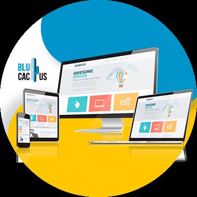 BluCactus -sitio web
