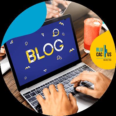 BluCactus -blog personal
