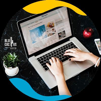 BluCactus - blog profesional