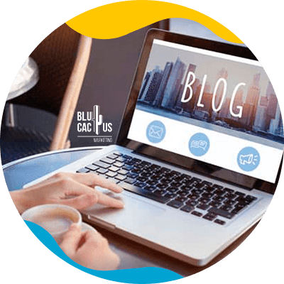 BluCactus -gestionar un blog