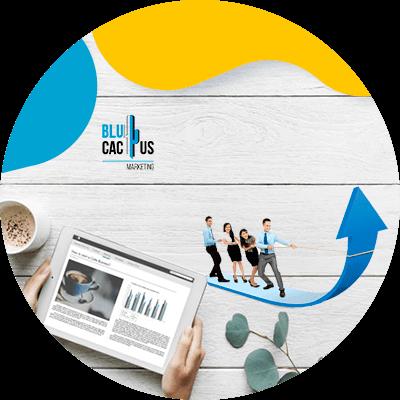 BluCactus - que es un blog - generar ventas