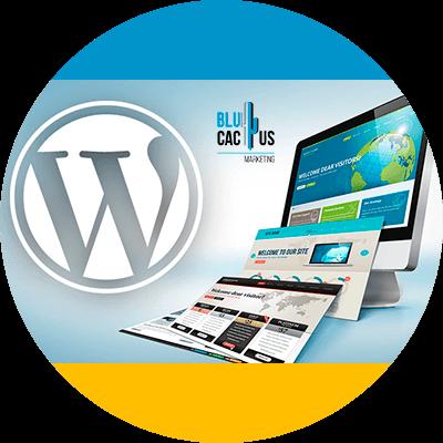 BluCactus - que es un blog - estartegias para blogs