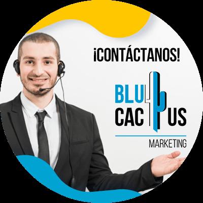 BluCactus - que es un blog - contactenos