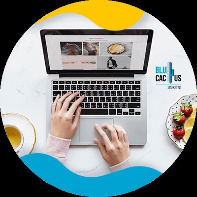 BluCactus - que es un blog - resumen