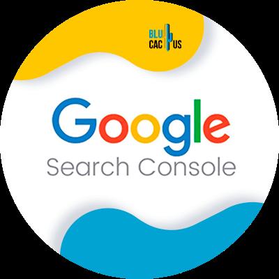 BluCactus - Seo On Page - google