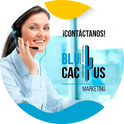 BluCactus - Seo On Page - contacto