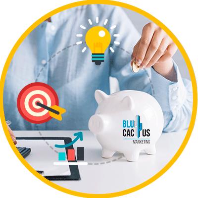 BluCactus - costes