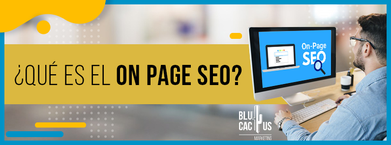 BluCactus - Seo On Page - titulo