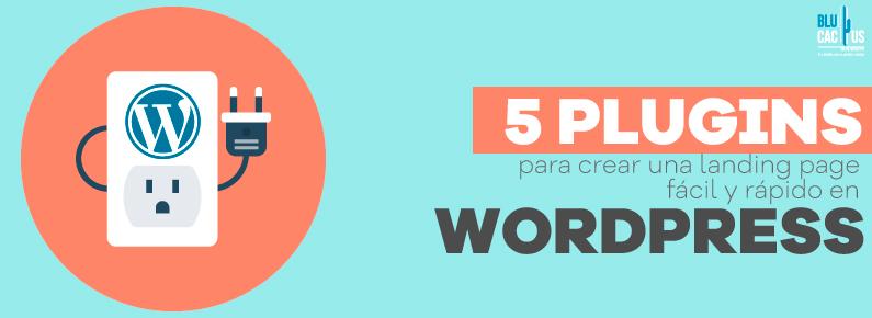 BluCactus 5 plugins para crear una landing page facil y rapido en WordPress