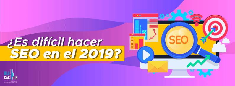 BluCactus SEO en el 2019