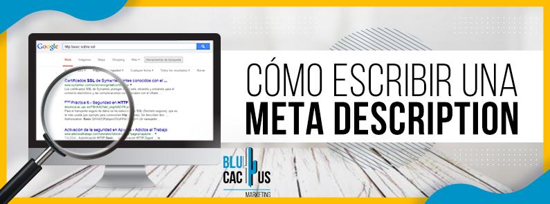 BluCactus - Cómo escribir una meta description - titulo