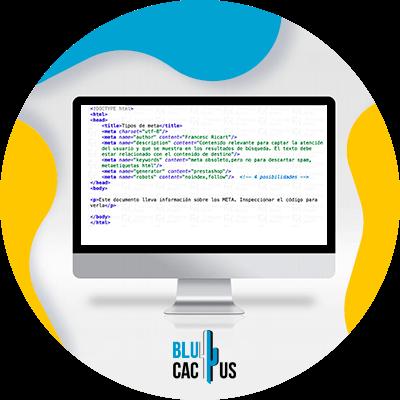 BluCactus - Cómo escribir una meta description - computadora con información importante