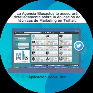 BluCactus - ¿Cómo atraer tráfico al blog corporativo? - twitter