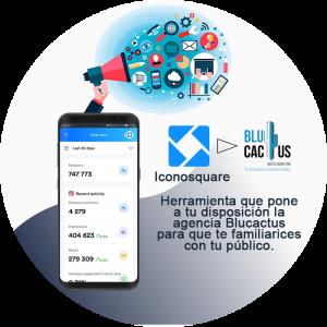 BluCactus - ¿Cómo atraer tráfico al blog corporativo? - celular