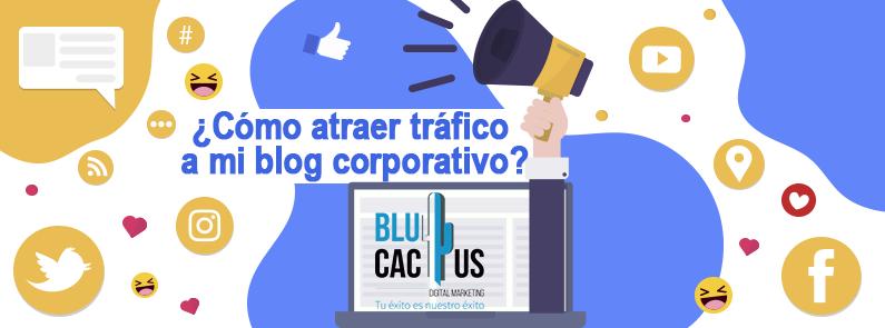BluCactus - como atraer trafico a mi blog corporativo - portada