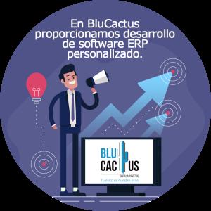 BluCactus - software ERP personalizado - persona