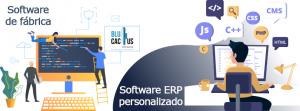 BluCactus - software ERP personalizado - computadora