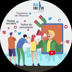 BluCactus / persona
