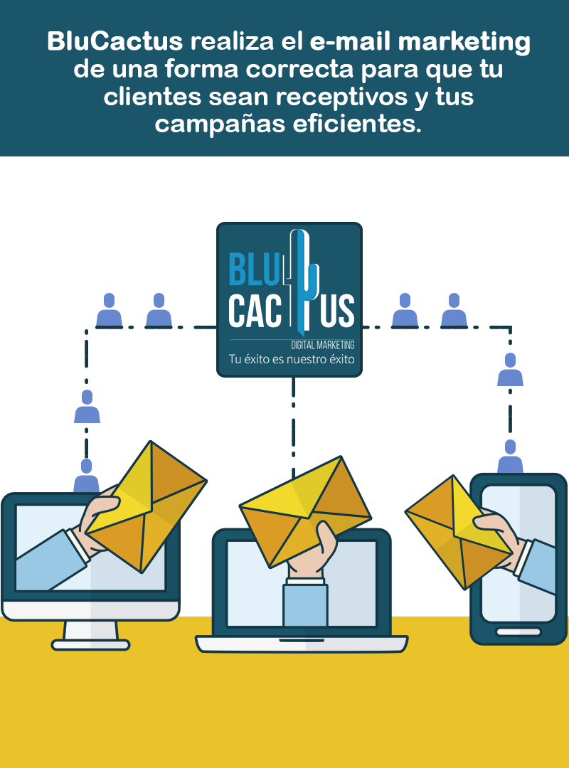 BluCactus - Email Marketing - sobres