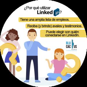 BluCactus - LinkedIn abre oficinas en México, ¿por qué utilizar Linkedin? - niños