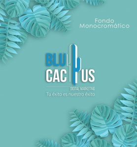 BluCactus - tendencias del diseño gráfico en 2020 - Un cactus en un fondo azul turqueza con el efecto de contraste monocromático