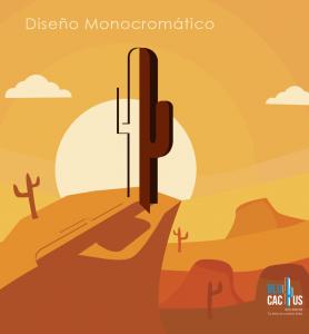 BluCactus - tendencias del diseño gráfico en 2020 - Mujer con un girasol con el efecto desarrollo de técnicas de contraste - Un cactus en un desierto con el efecto de contraste monocromático
