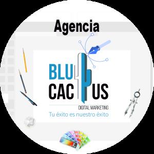 Blucactus-Qué es un logotipo-logo de blucactus