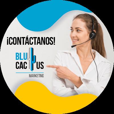 BluCactus - Cuánto cuesta una campaña de Google Adwords - contactanos